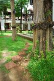 Walkway and tree in garden. They are walkway and tree in gaden near building.this place is in east of thailand Royalty Free Stock Photo
