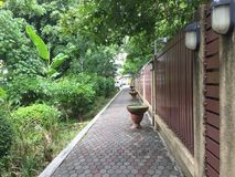 Walkway with tree park Royalty Free Stock Photos