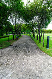 Walkway and trees filed in the garden. Royalty Free Stock Images
