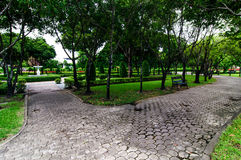 Walkway and trees filed in the garden. Royalty Free Stock Photos