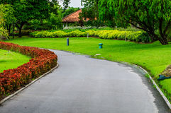 Walkway and trees filed in the garden. Stock Photography