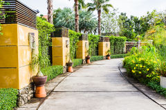 Walkway in tropical botanic garden Royalty Free Stock Image