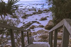 Walkway on tropical shoreline royalty free stock photos