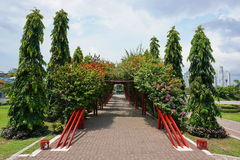 Walkway under tunnel of bougainvillea Panama City Stock Photo