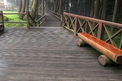The walkway from wood in alishan national park at taiwan
