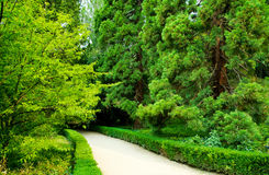Walkwayen parkerar in landskap arkivbilder
