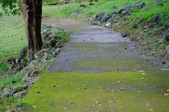walkways Arkivfoto