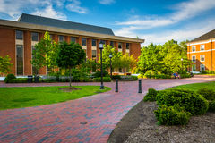 Walkways and buildings at John Hopkins University in Baltimore, Stock Photography