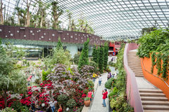 Walkways and stairs in Flower Dome. In Gardens by the Bay, Singapore Royalty Free Stock Image