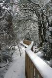 walkwayvinterunderland Arkivfoto