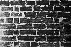 The Wall Royalty Free Stock Photo