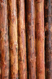 Wall. Logs in the wall of old russian izba Stock Photos