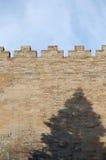 Wall. Sky wall and tree's shadow, shot at forbidden city, Beijing Royalty Free Stock Photography