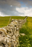 The wall. The stones wall on the field Stock Images