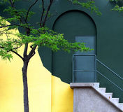The wall. Stairs and a tree by the wall Stock Photography