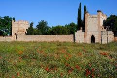 Wall of Alcala de Henares - Spain. Wall of ALCALA DE HENARES - Madrid - SPAIN royalty free stock photo