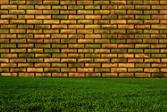 Wall And Grass Stock Image