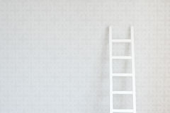 Free Wall And Ladder Stock Photos - 23509763