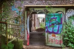 Wall, Art, Graffiti, Tree Stock Image
