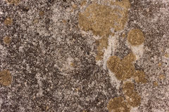 Wall background. Old Textured Cement Wall Background Royalty Free Stock Photo