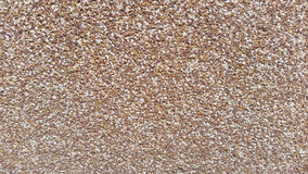 Wall. Background wall texture stock image