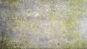 Wall. Background wall texture Royalty Free Stock Photo