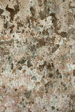 Wall background texture cement peels patches grunge stained rugged look.  Stock Photos