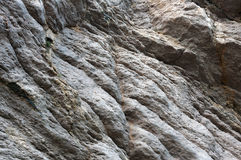 Wall, background, texture of designated rock Stock Image