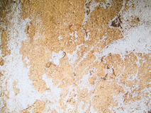 Wall background texture. Wall old background texture abstract Stock Images