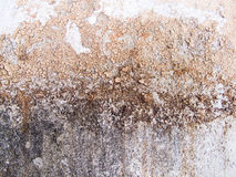 Wall background texture. Wall old background texture abstract Royalty Free Stock Photo