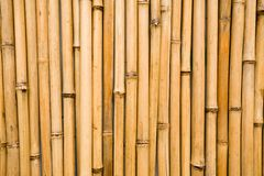 Wall  bamboo Royalty Free Stock Photography