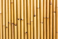 Wall of bamboo Royalty Free Stock Photos