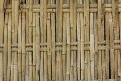 Wall of bamboo, used as background Stock Images
