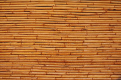 Wall from a bamboo Royalty Free Stock Photo