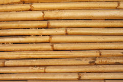 Wall from a bamboo Royalty Free Stock Photography