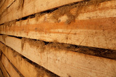 Wall of barn of rough planks with oakum receding Royalty Free Stock Image