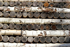 Wall from birch logs. Birch logs are stacked up and down, photographed close-up Stock Photos