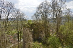 Wall of the Bologa medieval fortress. Royalty Free Stock Photo