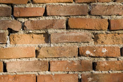 Wall from a brick. Old red wall from a brick Royalty Free Stock Photo