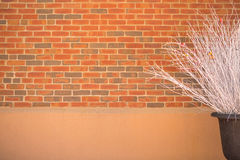 Wall Brick Royalty Free Stock Images