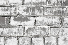 Wall from brick damaged by mould Stock Images