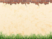 Wall with brick and grass - vector background Stock Images