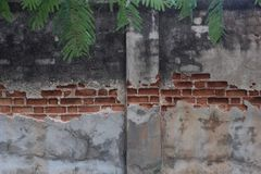 Wall brick outside Stock Image