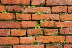 Wall Brick pattern. Old building Stock Photos