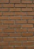 Wall. Brick wall on sunny day Royalty Free Stock Photo