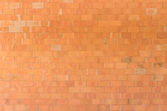 Wall brick. The wall brick texture background Stock Photography