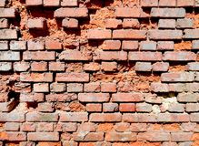 Wall brick texture Stock Image