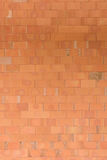 Wall brick in vertical. The wall brick texture background in vertical Royalty Free Stock Images