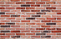 Wall of bricks Stock Photos