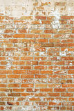 Wall of bricks with peeling paint, vertical Royalty Free Stock Images